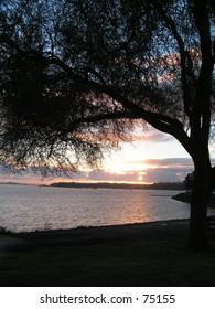 Mechanics Bay Sunrise