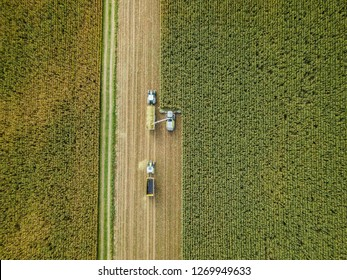 mechanized corn harvesting in Europe, Germany drone top down view
