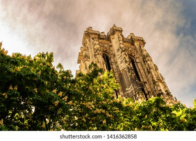 Mechelen Sint-Romboutstoren flowers at sunset