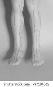 Medical acupuncture model of human feet on gray background