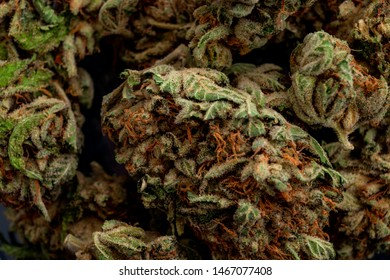 Medical application of the marijuana plant in treating addiction and legal weed concept theme with macro close up on THC crystals on cannabis bud
