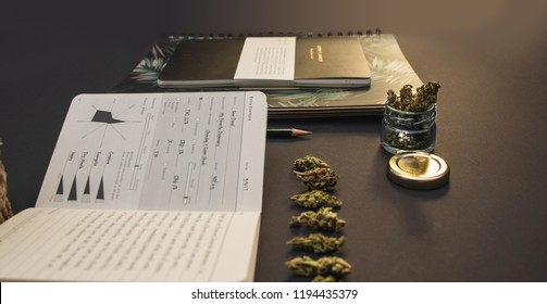 Medical cannabis buds in a line next to a cannabis journal