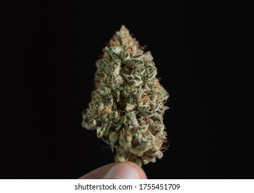medical cannabis flower close up
