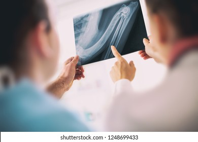 Medical examination. Team professional veterinarian holding an X-ray image of  injured legs of the reptile, putting a diagnosis while standing in front of X-ray