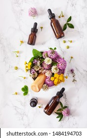 medical flowers herbs in mortar essential oils in bottles. alternative medicine. clover milfoil tansy rosebay