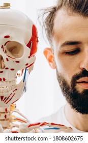 medical mannequin of human skeleton, skull, bones and joints