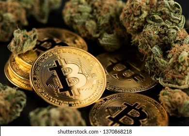Medical Marijuana Buds with Bitcoin Cryptocurrency Coins. Cannabis Business Concept