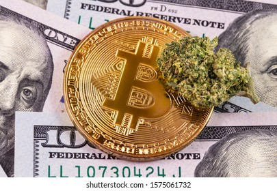 medical marijuana, cannabis bud and bitcoin, dollars banknotes macro, closeup