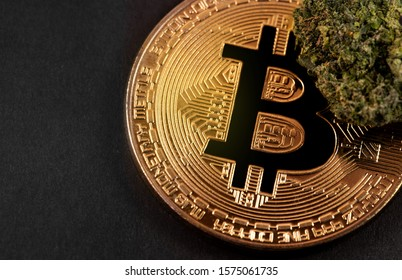 medical marijuana, cannabis bud with bitcoin, cryptocurrency macro, closeup