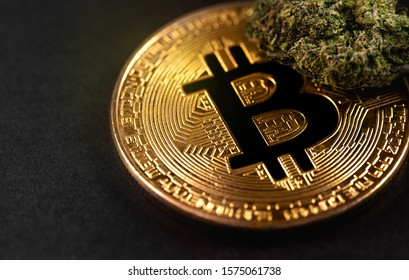 medical marijuana, cannabis bud and bitcoin symbol, cryptocurrency macro, closeup