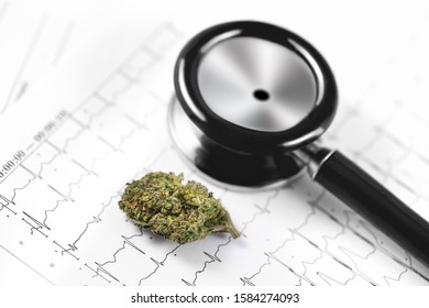 medical marijuana, cannabis bud and cardiolog analytics, stethoscope