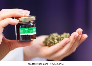 medical marijuana in the hand of a doctor. cannabis oil cbd alternative medicine