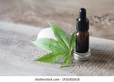 Medical marijuana leaf . cannabis sativa. product cbd oil
