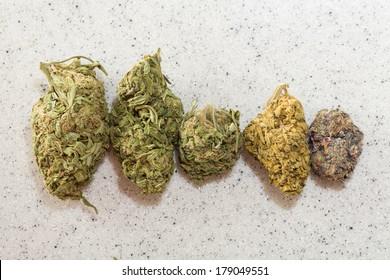 medical marijuana and recreational use it hitting the united states, multiple strands of cannibus