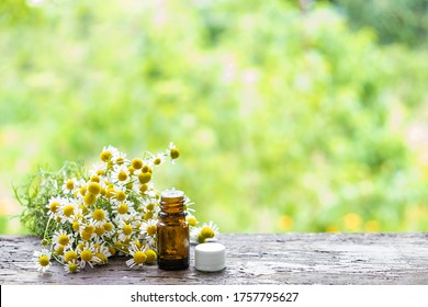 Medical oil bottles and chamomile plant bloom herbs lying on a wooden desk ina spring garden.