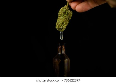 Medical Oil Cannabis - fingers holding flower of marijuana with leaking resin to  apothecary jar on the black background.