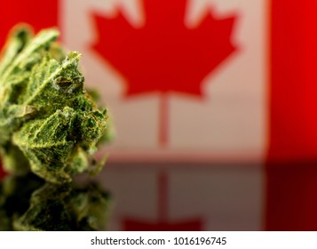 Medical Oil Cannabis - flower marijuana and oil cannabis with Canadian flag on the mirror background.