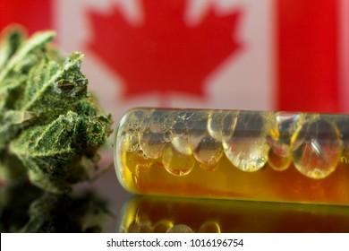 Medical Oil Cannabis - flower marijuana and oil cannabis with Canada flag on the mirror background.