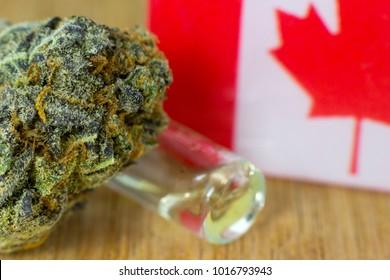 Medical Oil Cannabis - marijuana oil, resin and flowers with Canada flag on fresh oak wood background.