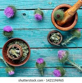 Medical plants flowers.Milk thistle or Silybum marianum