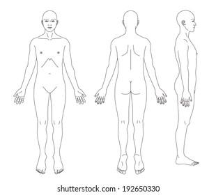 Human body medical images stock photos vectors shutterstock medical record human body diagram no sex ccuart Gallery