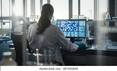 Medical Science Laboratory with Diverse Team of Professional Biotechnology Scientists Developing Drugs, Female Biochemist Working on Computer Showing Gene Therapy Interface. Back view Shot