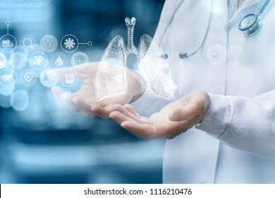 Medical worker shows human lungs on blurred background.