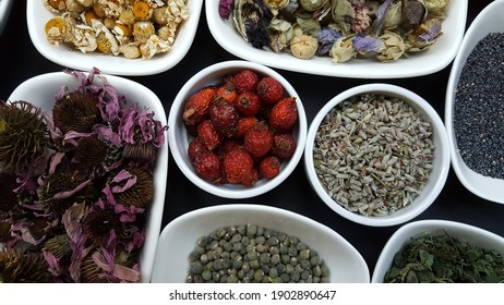 Medicinal aromatic plants in white bowls on black background