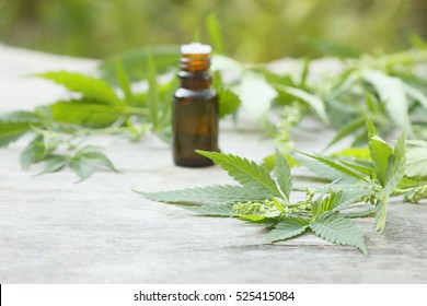 Medicinal cannabis with extract oil in a bottle with Marijuana leaf on wooden background, selective focus, place for text