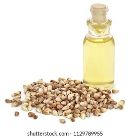 Medicinal cannabis seeds with extract oil in a bottle