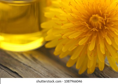 Medicinal dandelion with essential oil on wooden surface