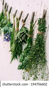 Medicinal green herbs are dried on rope, side view