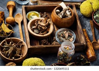 Medicinal herb.Healing herbs and plants .Herbal naturopathic medicine.