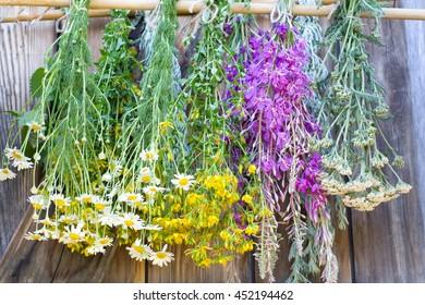 Medicinal herbs dry
