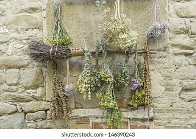 Medicinal Herbs herbalist outside home, medicine