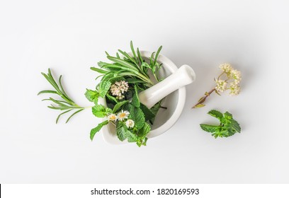 Medicinal herbs in mortar with pestle isolated on white background. Top view. Herbal medicine concept.