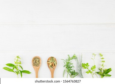 Medicinal Herbs on white background. Top view. Copy Space. Herb and Spices for cooking on white wooden background.