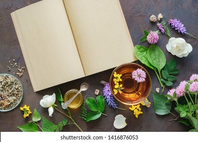 Medicinal herbs and plants, open blank paper book. Glass mug of healthy herbal tea and small honey jar. Top view.