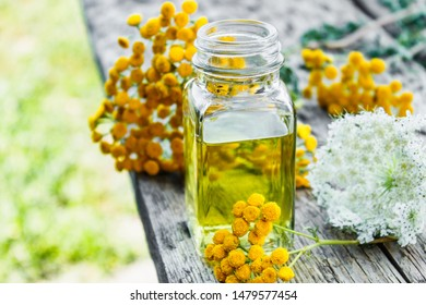 Medicinal herbs tansy and yarrow. A can of essential oil or tincture of tansy and yarrow in a glass bottle on a wooden background. Herbal medicine concept. spa