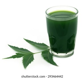Medicinal neem leaves with extract over white background