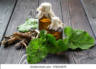 Medicinal plant burdock (Arctium lappa). The roots and leaves of burdock, burdock oil in bottles on wooden background. It is used for the treatment and care of hair