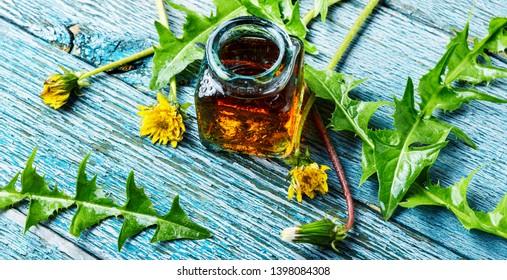 Medicinal plant dandelion or Taraxacum officinale.Dandelion leaves.Herbal medicine