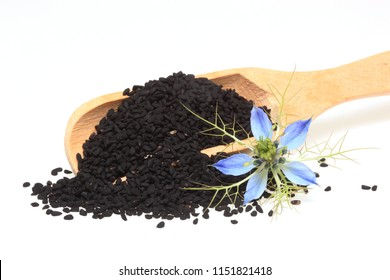 Medicinal plant Nigella sativa, black caraway, also known as black cumin, nigella