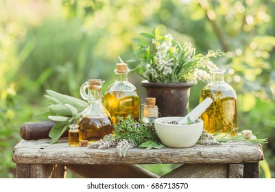 Medicinal plants from the garden and the different types of oils for massage and aromatherapy.