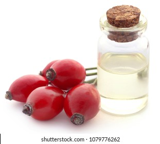 Medicinal Rose hips with essential oil in a glass bottle