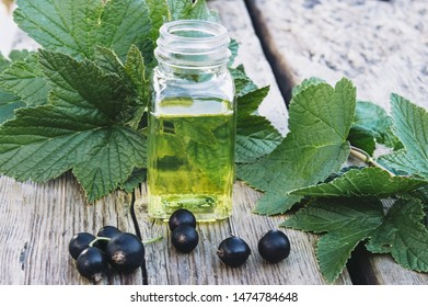 Medicinal tincture with black currant in a glass bottle. Cold remedy extract of black currant. Close-up.