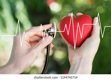 Medicine doctor holding red heart shape in hand and healthcare network connection with virtual screen interface pulse, medical technology concept