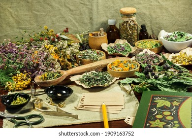 Medieval alchemy laboratory for apothecary treatment. Mystic witch lab. Chemical components, herbs, berries for divination and rituals. Herbs for alternative medicine. Herbal cosmetics, phytotherapy.