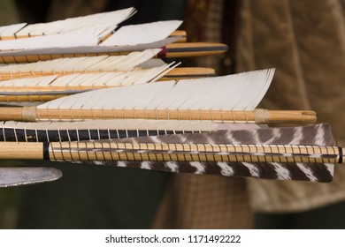 Medieval arrow fletchings or feathers traditionally attached with glue and thread they are used to stabilise the arrow in flight
