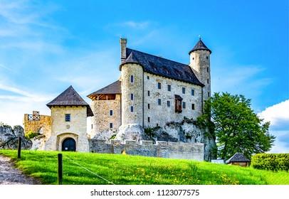 Medieval castle exterior landscape. Fairytale castle poster. Castle landscape